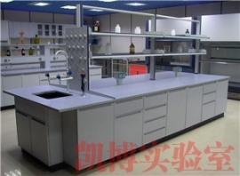 全钢中央实验室台